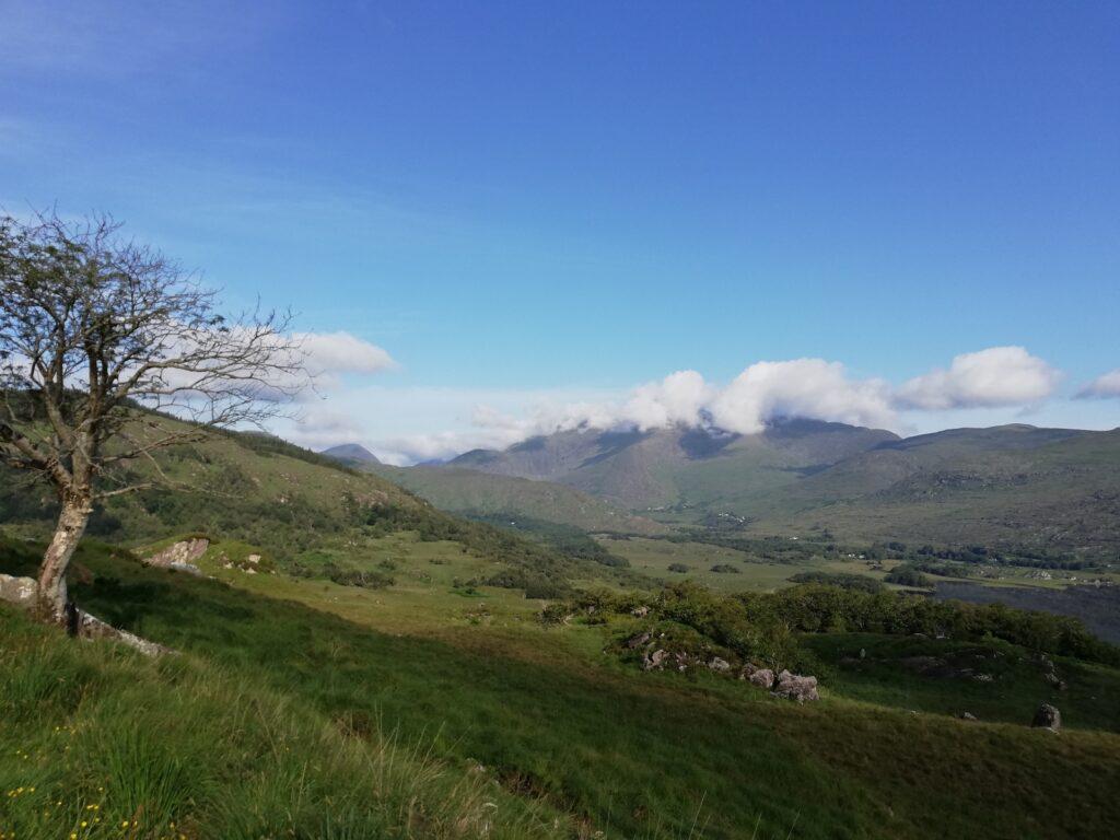 Het groene Ierse landschap