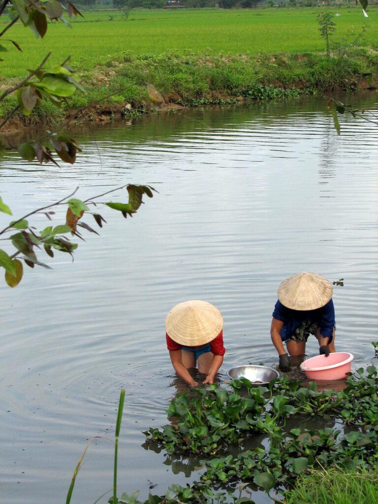 Landschap tijdens je reis naar Vietnam