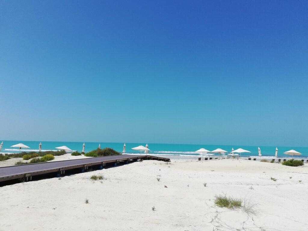 Saadiyat Island - Abu Dhabi